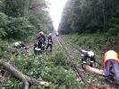 Bahnunfall_10