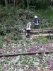 Bahnunfall_17