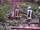 Bahnunfall_18