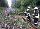 Bahnunfall_6